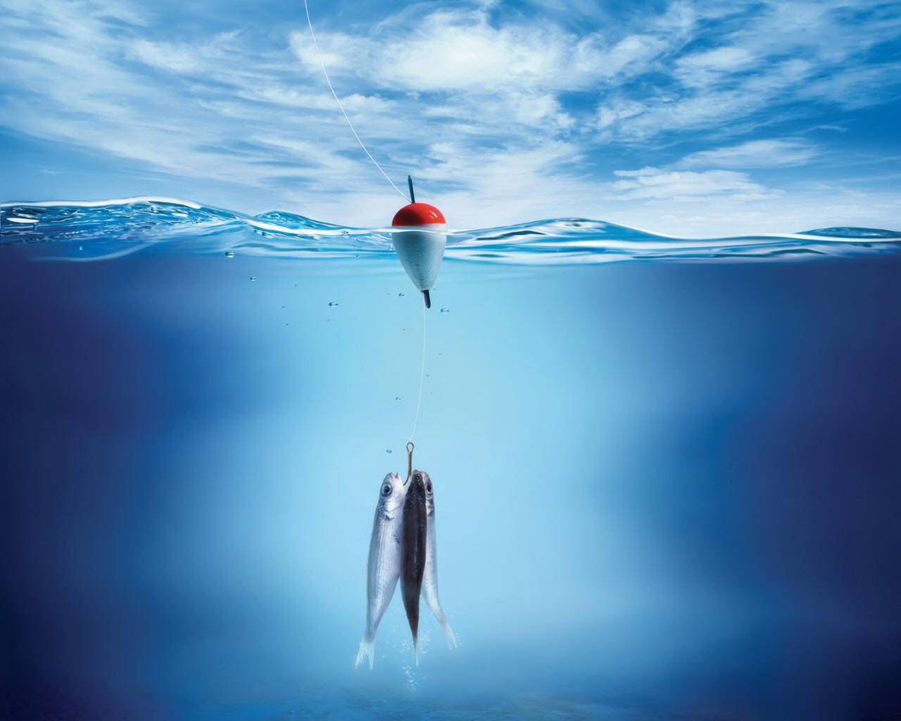 rybki-pod-woda-i-splawik